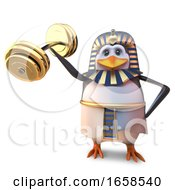 Strong Egyptian Pharaoh Penguin Tutankhamun Lifts Some Heavy Weights With His Little Wing
