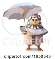 Cautious Egyptian Pharaoh Penguin Uses An Umbrella To Keep The Sun Off by Steve Young