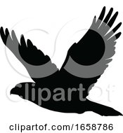 Silhouetted Flying Eagle