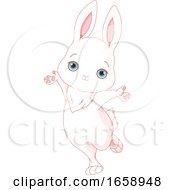 Cute Happy White Bunny Rabbit Jumping