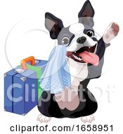 Cute Boston Terrier Dog Traveling And Waving Goodbye