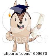 Armadillo With Diploma
