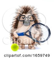 3d Hedghog Tennis by Steve Young