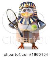 Active Penguin Pharaoh Tutankhamun Plays Tennis All The Time