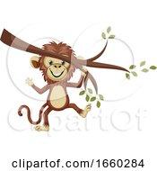Monkey On A Branch