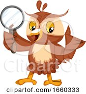 Owl With Magnifying Glass