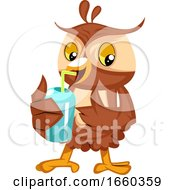 Owl Drinking Soda
