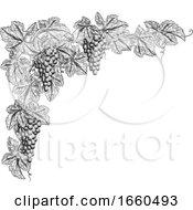 Grape Bunches On Vine Corner Border Design Element