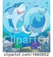 Cartoon Sharks Underwater