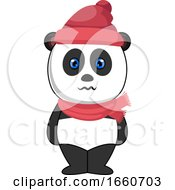 Panda With Hat And Scarf