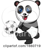 Panda With Football Ball