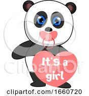 Baby Girl Panda