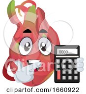 Dragon Fruit With Calculator