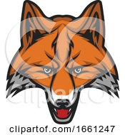 Fox Mascot by Vector Tradition SM
