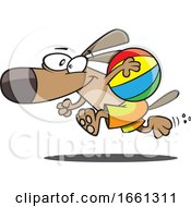 Cartoon Dog Running With A Beach Ball by toonaday