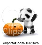 3d Baby Panda Bear Finds A Halloween Pumpkin by Steve Young