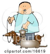 Little Caucasian Boy Walking His Small Weiner Dog A Dachshund And His Pet Ferret On Leashes Clipart Image Graphic