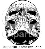 Skull Grim Reaper Vintage Woodcut Illustration