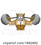 Wildcat Mascot Weight Lifting Body Builder