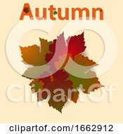 Autumn Background With Leafs And Decorated Text