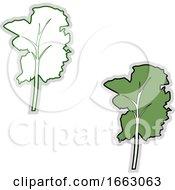 Fresh Kale by Morphart Creations