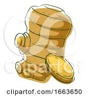 Ginger Superfood Illustration