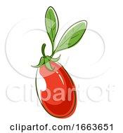 Goji Berry Superfood