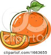 Orange Superfood Illustration