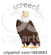 Eagle Sound Screech Illustration