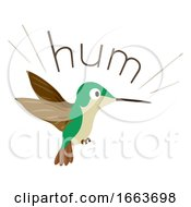 Hummingbird Sound Hum Illustration