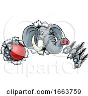 Elephant Cricket Ball Sports Animal Mascot