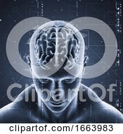 3D Medical Background With Technology Design On Male Figure With Brain Highlighted