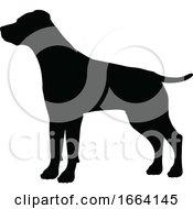 08/29/2019 - Dog Silhouette Pet Animal