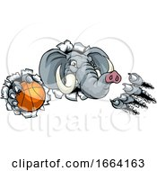 Elephant Basketball Ball Sports Animal Mascot