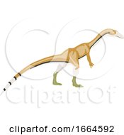 Coelophysis by Morphart Creations