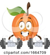 Apricot Lifting Weights