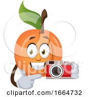Apricot With Camera