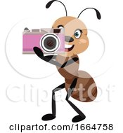 Ant With Camera