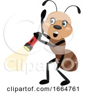 Ant With Flashlight