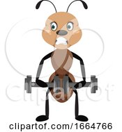 Ant With Weights