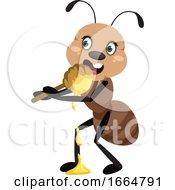 Ant Eating Honey