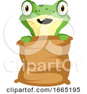 Cheerful Baby Frog Holding A Pillow