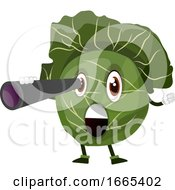 Cabbage With A Spyglass