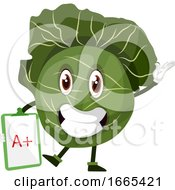 Cabbage Is Holding A Paper