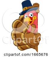 Turkey Pilgrim Hat Thanksgiving Cartoon Character