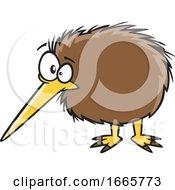 Cartoon Kiwi Bird