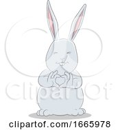 Gray Bunny Rabbit Forming A Heart by cidepix