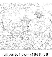 Black And White Tortoise And Butterflies