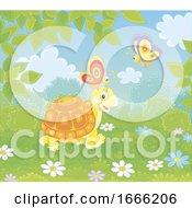 Tortoise And Butterflies