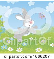 Bunny Rabbit Chasing A Butterfly